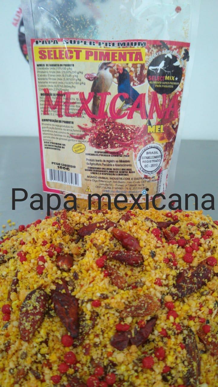 SELECT PAPA DE PIMENTA MEXICANA SUPER PREMIUM 4KG - ZC.60