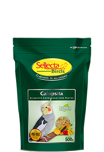 SELLECTA - EXTRUSADA NATURAL CALOPSITA COM FRUTAS 500G