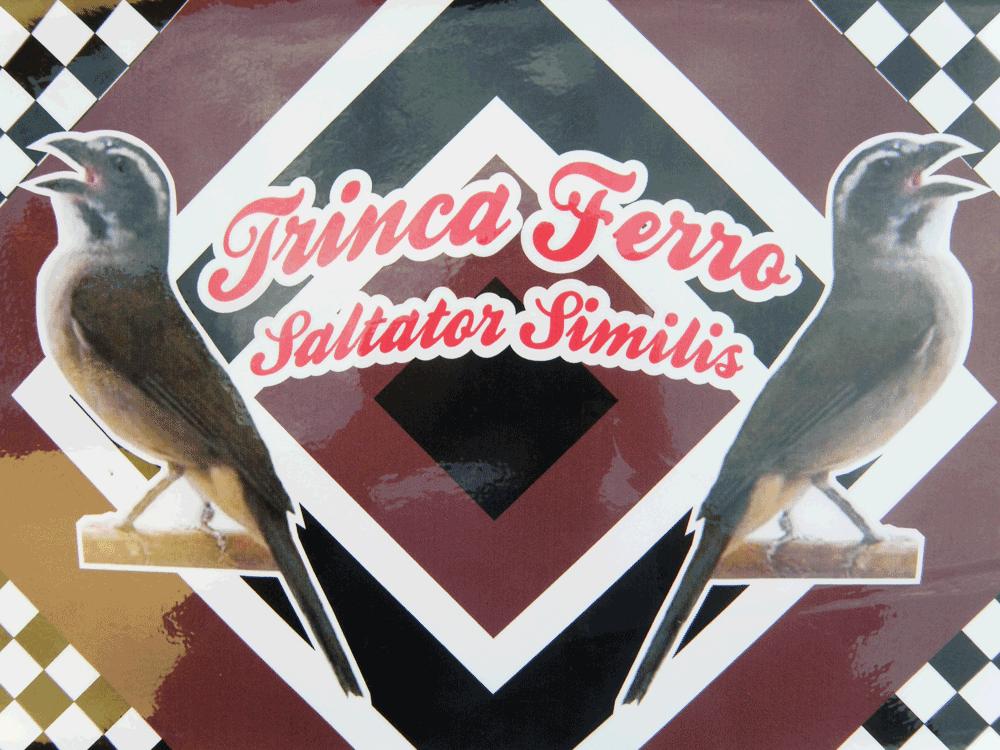 Adesivo Contact Trinca Ferro Xadrez - Com Logo