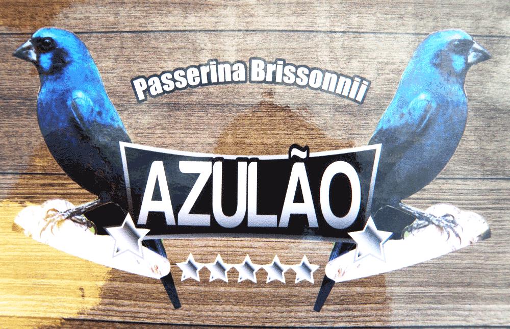 Adesivo Contact Azulão - Com Logo