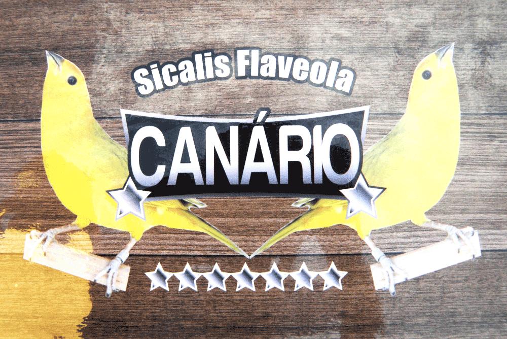 Adesivo Contact Canário - Com Logo