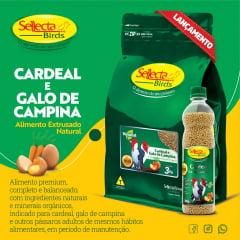 SELLECTA - EXTRUSADO NATURAL CARDEAL E GALO DA CAMPINA 3KG