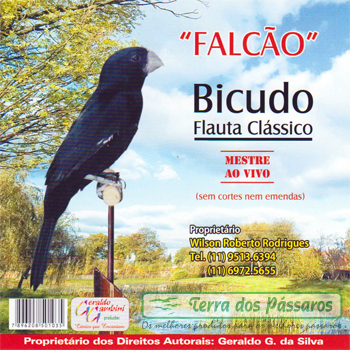 CD - Bicudo Falcão