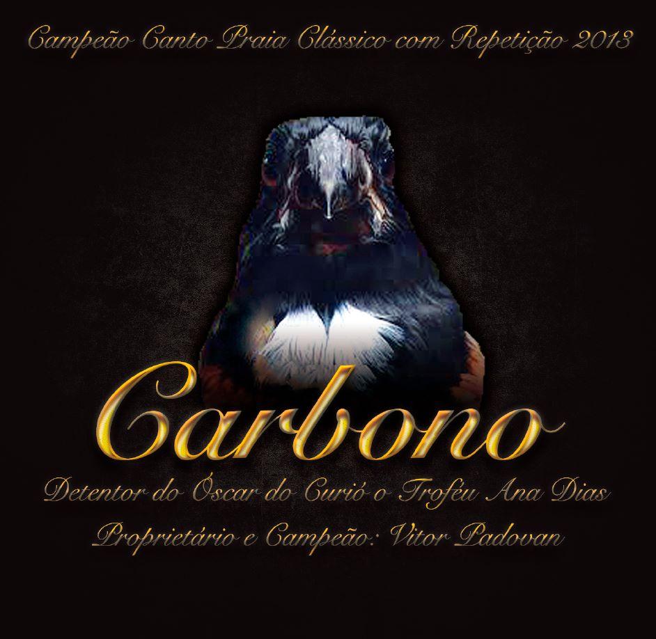 CD - Do Curió Carbono - Campeão Brasileiro 2013