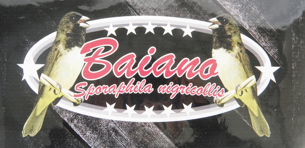 Adesivo Contact Coleiro Baiano - Sem Logo