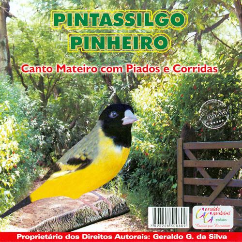 CD - Pintassilgo Pinheiro